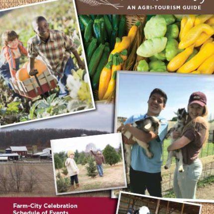 Harvest Magazine 16